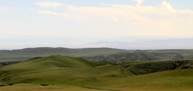 В Гареджийской пустыне в мае